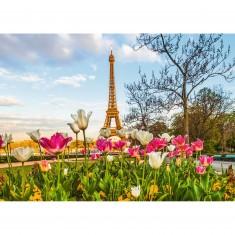 Puzzle 1000 pièces : Jardin de tulipes et Tour Eiffel