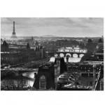 Puzzle 1000 pièces : Paris et la Seine