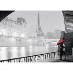 Puzzle 1000 pièces : Paris sous la pluie