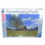 Puzzle 1000 pièces : Prairie de pissenlits au Parc Naturel de Reutte
