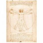 Puzzle 1000 pièces - Léonard de Vinci : L'Homme de Vitruve