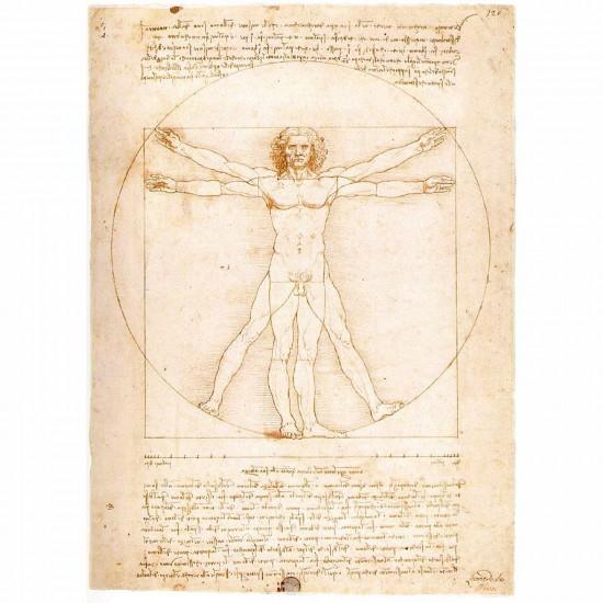 Puzzle 1000 pièces - Léonard de Vinci : L'Homme de Vitruve - Ravensburger-15250