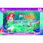 Puzzle cadre : 15 pièces : Le monde d'Ariel