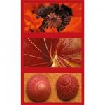 Puzzle 1500 pièces - Triptyque : Impressions naturelles en rouge