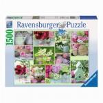 Puzzle 1500 pièces : Détail de jardin fleuri