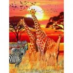 Puzzle 1500 pièces : Un coucher de soleil africain