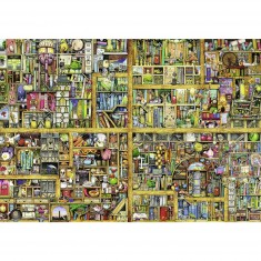 Puzzle 18000 pièces : Magical Bookcase, Thompson