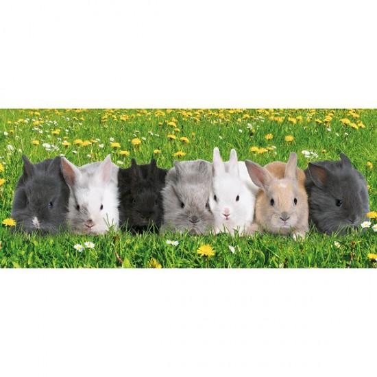 Puzzle 200 pièces XXL panoramique - Parade des lapins - Ravensburger-12696