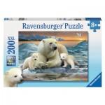 Puzzle 200 pièces : Ours blancs
