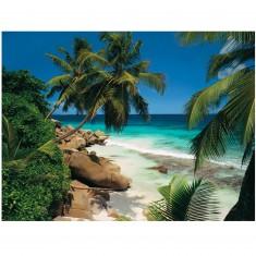 Puzzle 2000 pièces : Seychelles