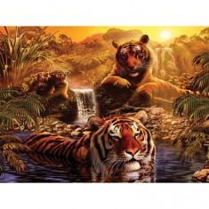 Puzzle 2000 pièces - Le bain des tigres