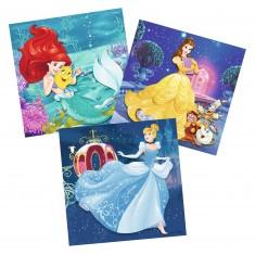 Puzzle 3 x 49 pièces : Princesses Disney : Les aventures des Disney Princesses