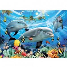 Puzzle 300 pièces - Le bal des dauphins