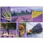 Puzzle 300 pièces : Ma Provence