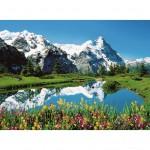 Puzzle 300 pièces : Plateau de Berne, Suisse