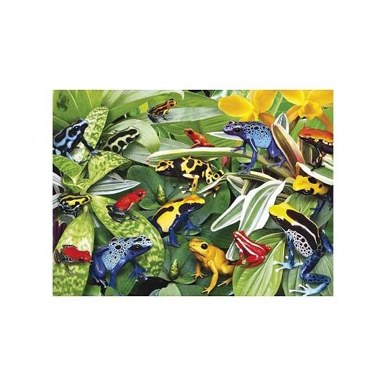 Puzzle 300 pièces - Grenouilles - Ravensburger-13018