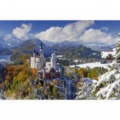Puzzle 3000 pièces : Château de Neuschwanstein en hiver