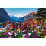 Puzzle 3000 pièces : Fleurs des montagnes