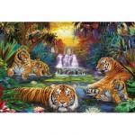 Puzzle 3000 pièces : Tigres au coin de l'eau
