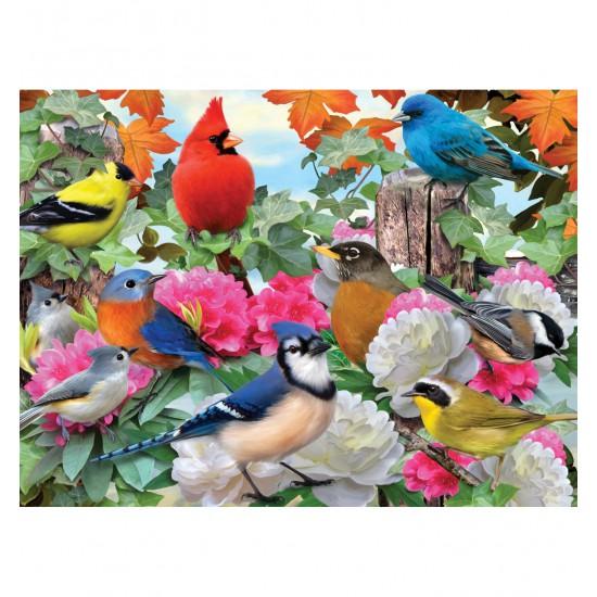 Puzzle 500 pièces : De beaux oiseaux - Ravensburger-14223