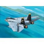 Maquette avion: F-14A Tomcat