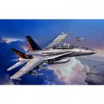 Maquette avion: F/A-18 D Hornet  Wild Weasel