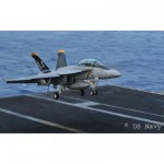 Maquette avion: F/A-18F Super Hornet Twinseater