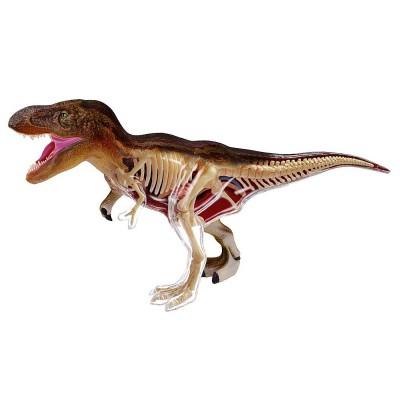 Kit anatomie X-Ray : Tyrannosaure Rex - Revell-02091