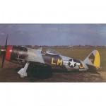 Maquette avion : P-47 M Thunderbolt