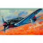 Maquette avion: Micro Wings : Focke Wulf Fw 190 A-8