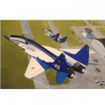 Maquette avion: MIG 29 The Swifts