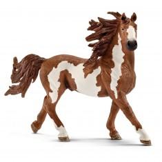 Figurine cheval : Etalon Pinto