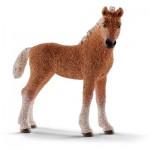 Figurine cheval : Poulain Bashkir Curly