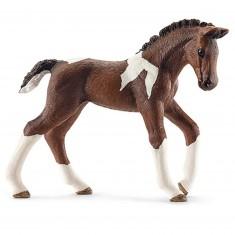 Figurine cheval : Poulain Trekehnen