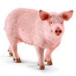Figurine cochon domestique