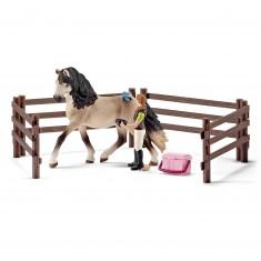Kit de soin chevaux andalous