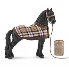 Kit de soin chevaux frisons