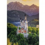 Puzzle 1000 pièces : Château Neuschwanstein