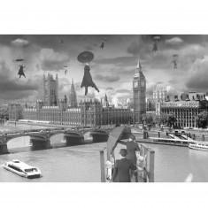 Puzzle 1000 pièces Thomas Barbey : Ascendance