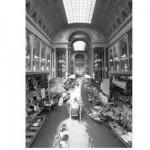 Puzzle 1000 pièces Thomas Barbey : Voie navigable