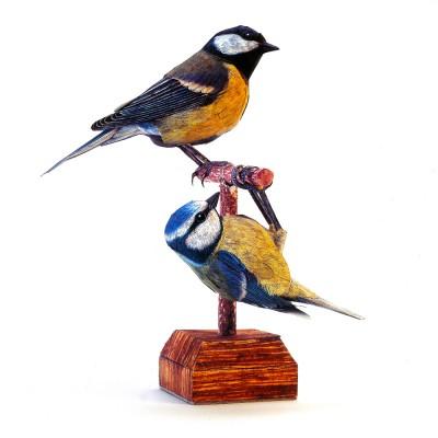 Maquette en carton : Oiseau : Mésanges - Schreiber-Bogen-A52