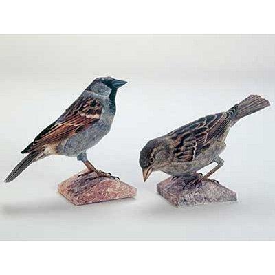 Maquette en carton : Couple d'oiseaux - Schreiber-Bogen-A48