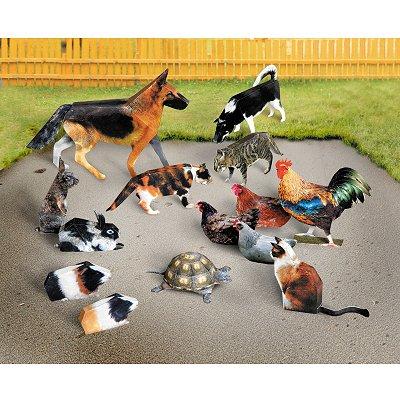Maquette en carton : Les animaux domestiques  - Schreiber-Bogen-687