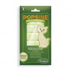 Recharge éco-moulage Popsine 110 g : Blanc Phosphorescent