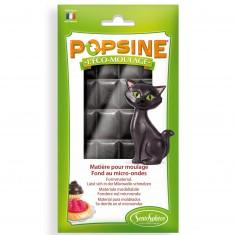 Recharge Eco-moulage Popsine 110g : Noir