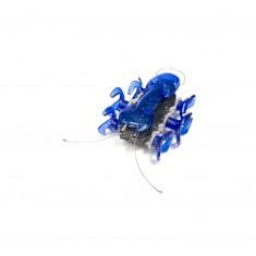 Hex Bug Robotic creatures : Fourmi bleue
