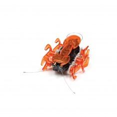 Hex Bug Robotic creatures : Fourmi orange