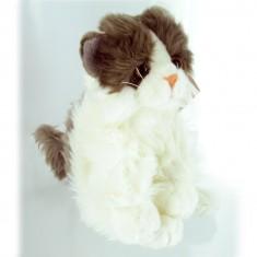 Peluche Chat 23 cm : Blanc et gris