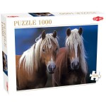 Puzzle 1000 pièces : Deux chevaux