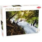 Puzzle 1000 pièces : Cascade dans la forêt